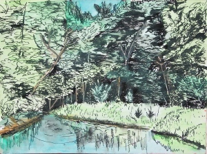 "Sealy's Pond, South Deerfield, Massachusetts, May 1992, ink and watercolor, 7""X5"""