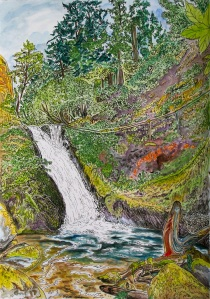 """Middle Bridal Veil Falls , Columbia River Gorge, Oregon, September 2011, ink and watercolor, 11""""X15"""""""