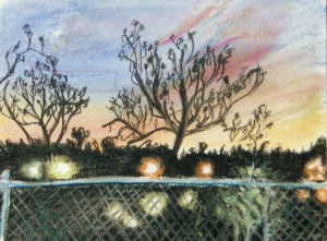 """View from Canal Street of a Brattleboro Sunset, Brattleboro, Vermont, June 1994, pastels, 15""""X11"""""""