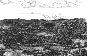 View From the Pocumtuck Range, Deerfield, Massachusetts, October 1991, ink, 30