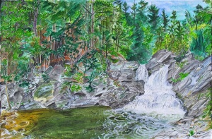 """Twin Falls, Westminster West, Vermont, September 2005, ink and watercolor, 22""""X15"""""""