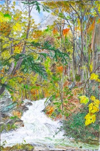 """Sacketts Brook Falls, Putney, Vermont, October 2005, ink and watercolor, 22""""X15"""""""