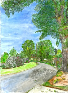 Ladd Circle, East Portland, Oregon, June 2007, ink and watercolor, 19