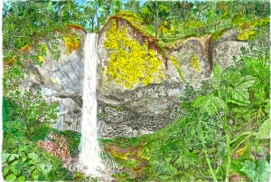 """Latourell Falls, Columbia River Gorge, July 2007, ink and watercolor, 22""""X15"""""""