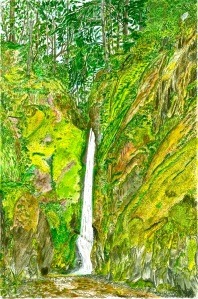 """Lower Oneonta Falls, Columbia River Gorge, August 2007, ink and watercolor, 15""""X22"""""""