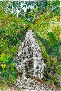 Fairy Falls, Columbia River Gorge, Oregon, September 2007, ink and watercolor, 15