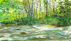 "The Grassy Island, Zoar, Massachusetts, April 2008, ink and watercolor, 20""X11"""
