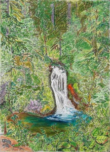 "Middle Butte Creek Falls, Scotts Mills, Oregon, ink and pastels, 15""X22"""