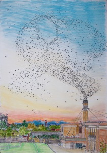 "Swifts at Chapman School, NW Portland Oregon, ink and pastels, 22""X30"""